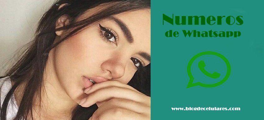 23c30f0ce25b5 Números de Chicas y Mujeres Whatsapp para Intercambiar Fotos y Videos -  Blog de Celulares