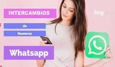 intercambio de numeros de celulares mujeres y chicas hot