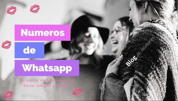 Números de Whatsapp de Chicas Lindas o Mujeres para Chatear